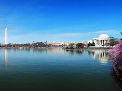 10 Things You Didn't Know About DC